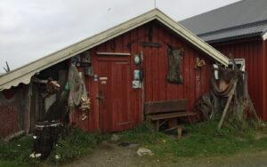 NSK_Trondelag_2019_Fosen_12